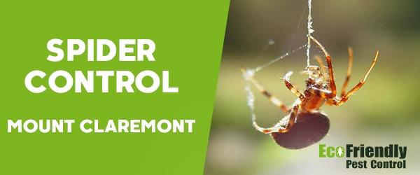 Spider Control Mount Claremont