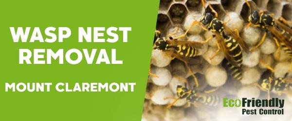Wasp Nest Remvoal Mount Claremont