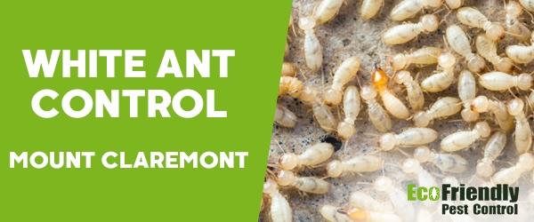 White Ant Control Mount Claremont