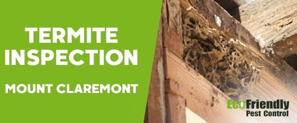 Termite Inspection Mount Claremont