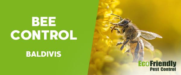 Bee Control Baldivis