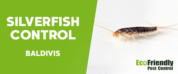 Silverfish Control Baldivis