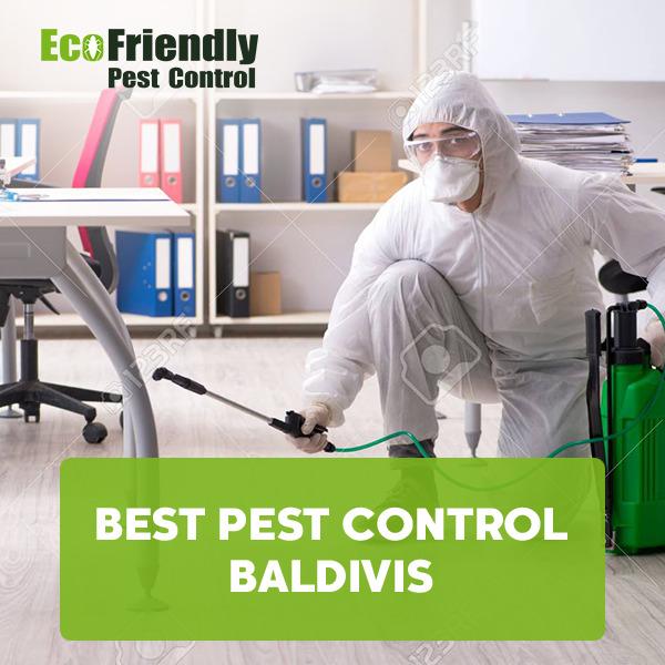 Best Pest Control Baldivis