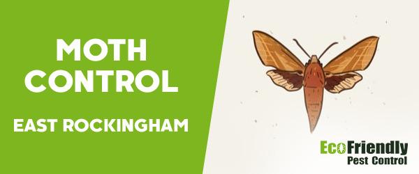 Moth Control East Rockingham