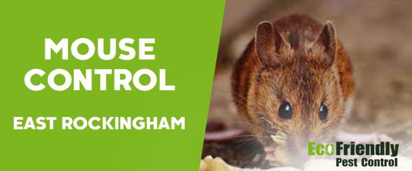 Mouse Control East Rockingham