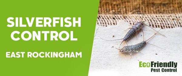 Silverfish Control East Rockingham