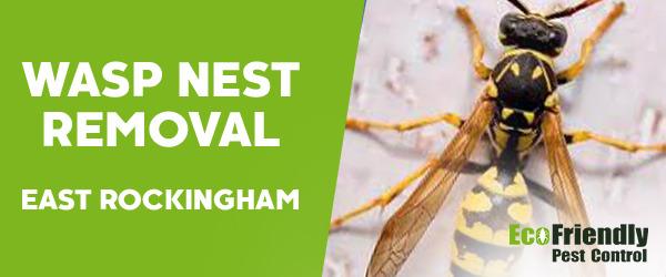 Wasp Nest Remvoal East Rockingham