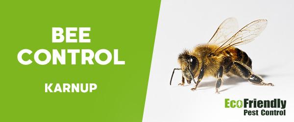 Bee Control Karnup
