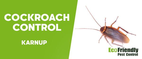 Cockroach Control Karnup