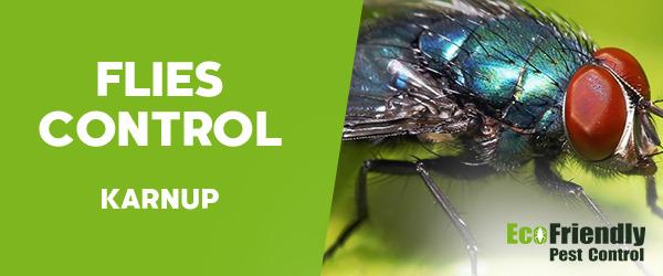 Flies Control Karnup