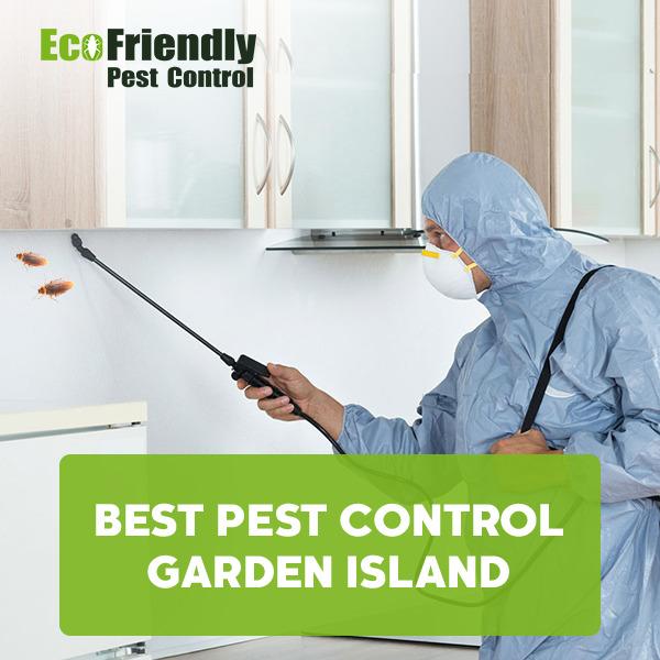Best Pest Control Garden Island