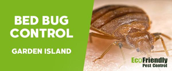 Bed Bug Control Garden Island