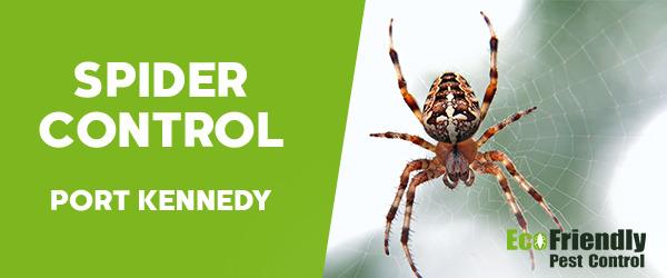 Spider Control  Port Kennedy