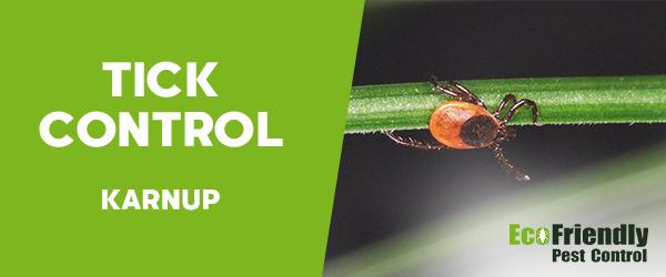 Ticks Control Karnup