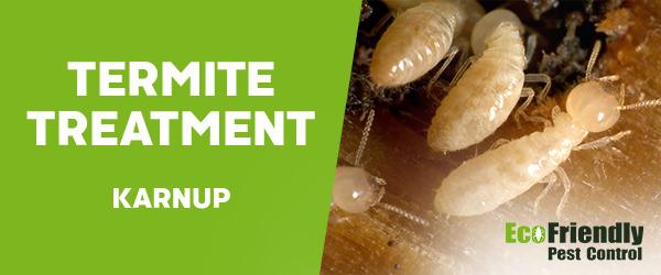 Termite Control Karnup