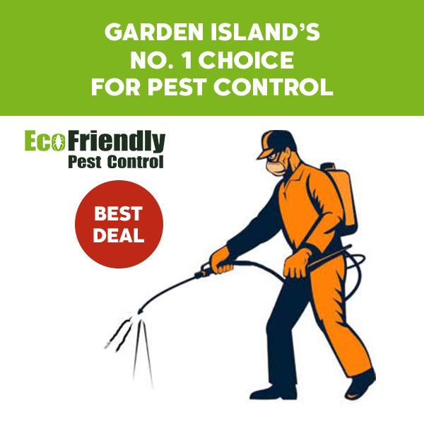 Pest Control Garden Island