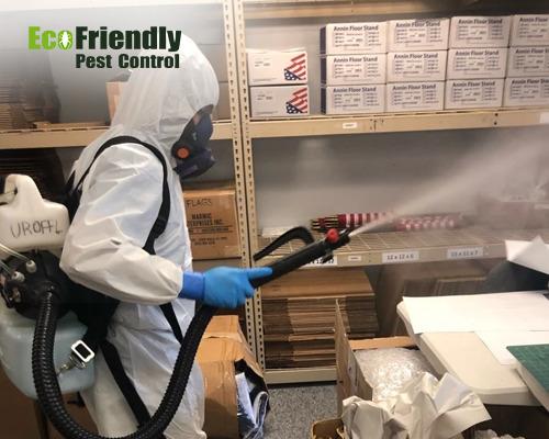 Pest Control Warnbro