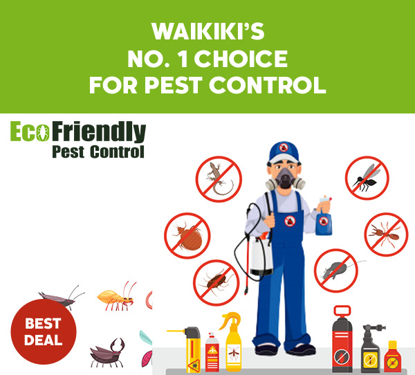 Pest Control Waikiki