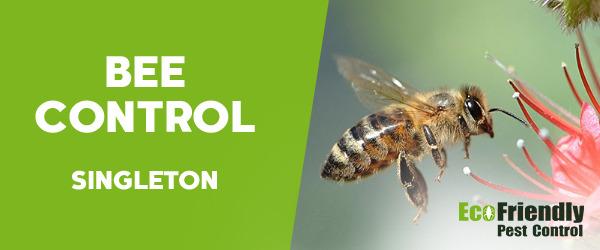Bee Control Singleton