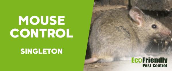 Mouse Control Singleton