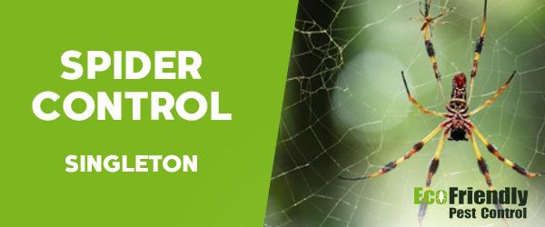 Spider Control Singleton