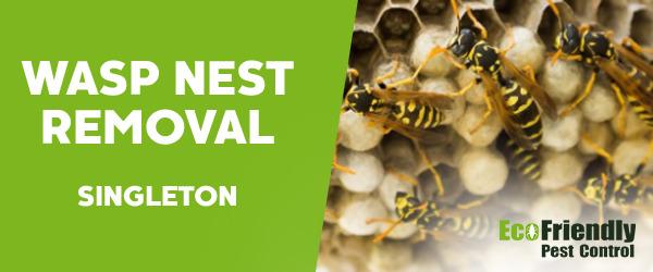 Wasp Nest Remvoal Singleton
