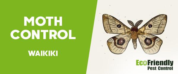 Moth Control Waikiki