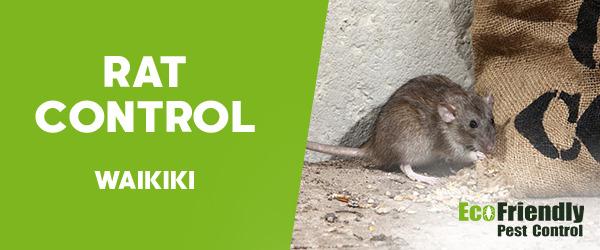 Rat Pest Control Waikiki