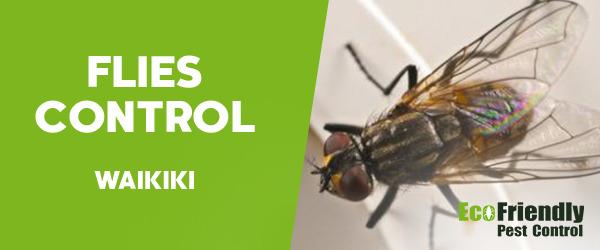 Flies Control Waikiki