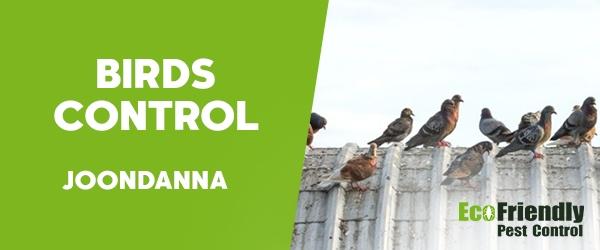 Birds Control  Joondanna