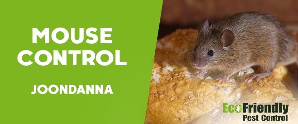 Mouse Control  Joondanna