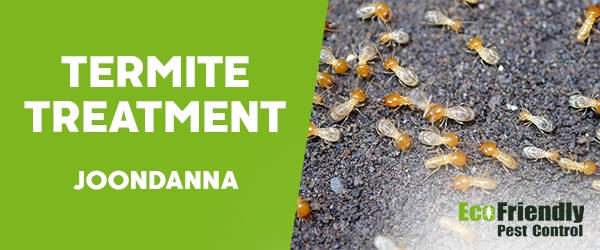 Termite Control  Joondanna