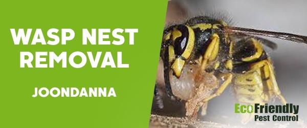 Wasp Nest Remvoal  Joondanna