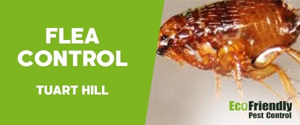 Fleas Control  Tuart Hill