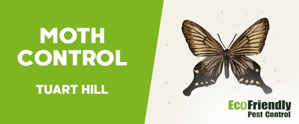 Moth Control  Tuart Hill