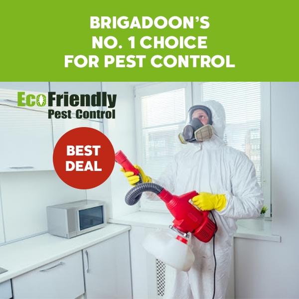 Pest Control Brigadoon