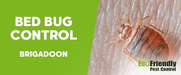Bed Bug Control  Brigadoon