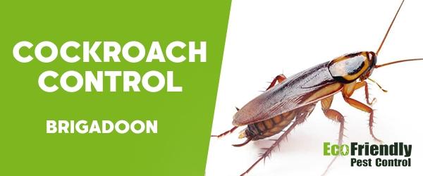Cockroach Control  Brigadoon