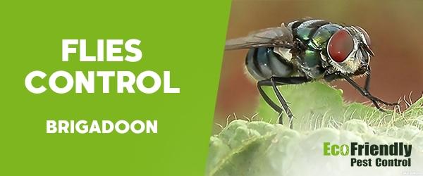 Flies Control  Brigadoon