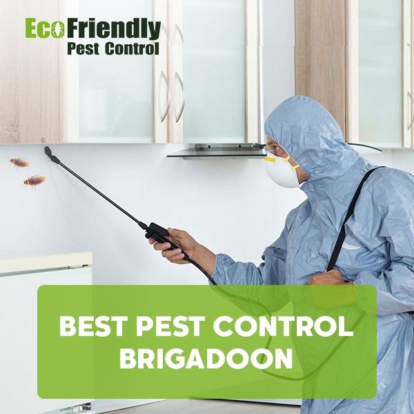 Best Pest Control  Brigadoon