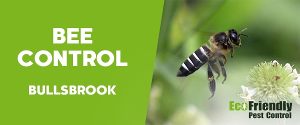 Bee Control Bullsbrook