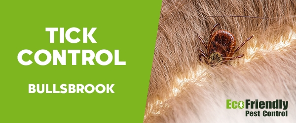 Ticks Control Bullsbrook