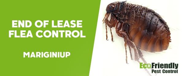 End of Lease Flea Control  Mariginiup