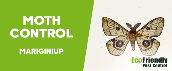 Moth Control  Mariginiup