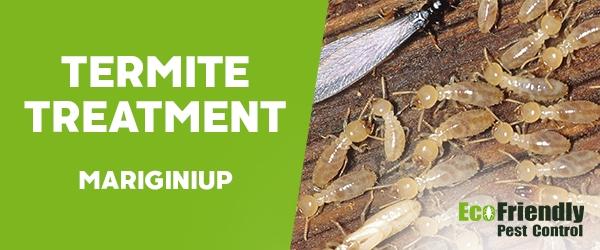 Termite Control  Mariginiup