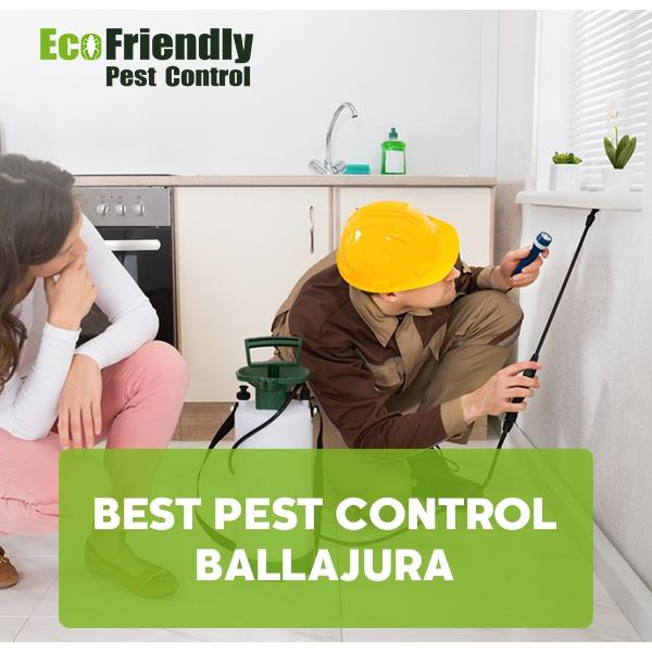 Best Pest Control Ballajura