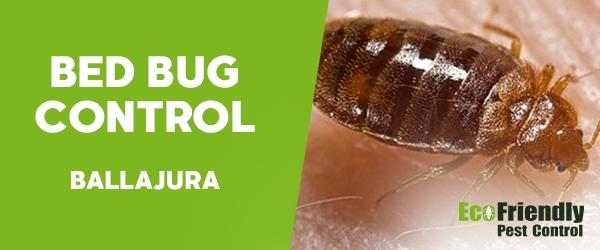 Bed Bug Control Ballajura
