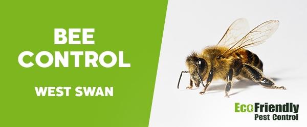 Bee Control West Swan
