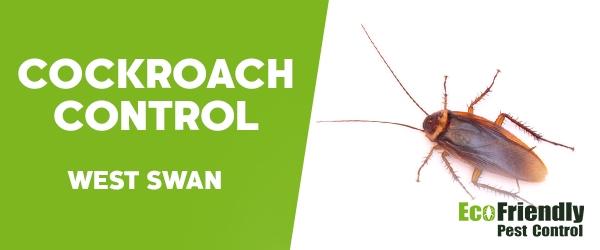Cockroach Control West Swan