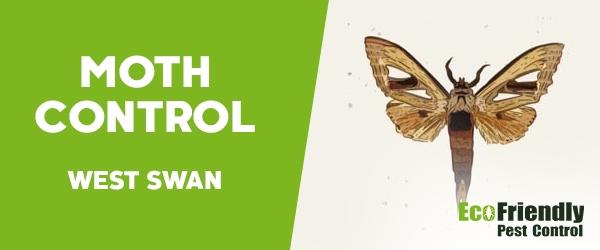 Moth Control West Swan